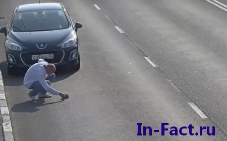 Невероятное видео зафиксировала камере наблюдение, человек спас котенка